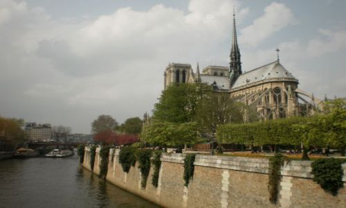 Zdjecie FRANCJA / Île-de-France / Paryż / Notre Dame
