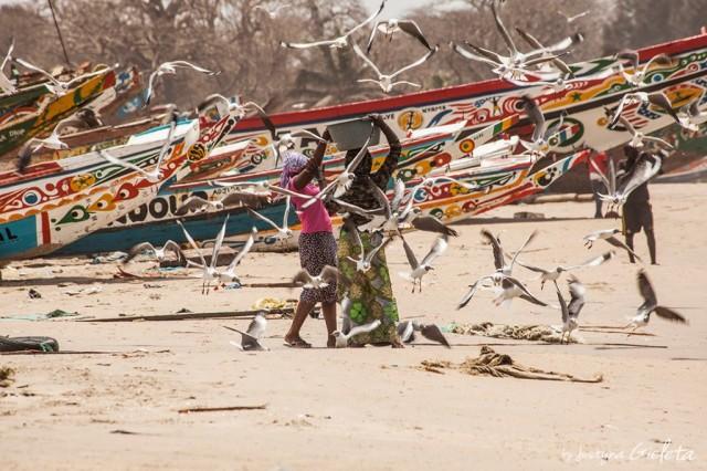 Zdjęcia: Gambia, Gambia, African Road Trip - wioska rybacka w Gambii, GAMBIA