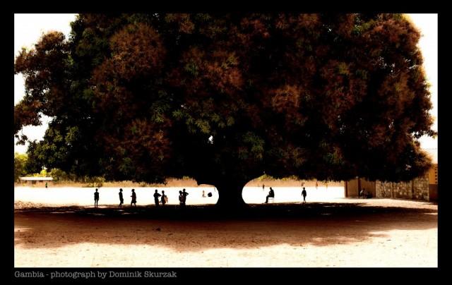 Zdjęcia: ---, ---, Gambia- kraina uśmiechu, GAMBIA