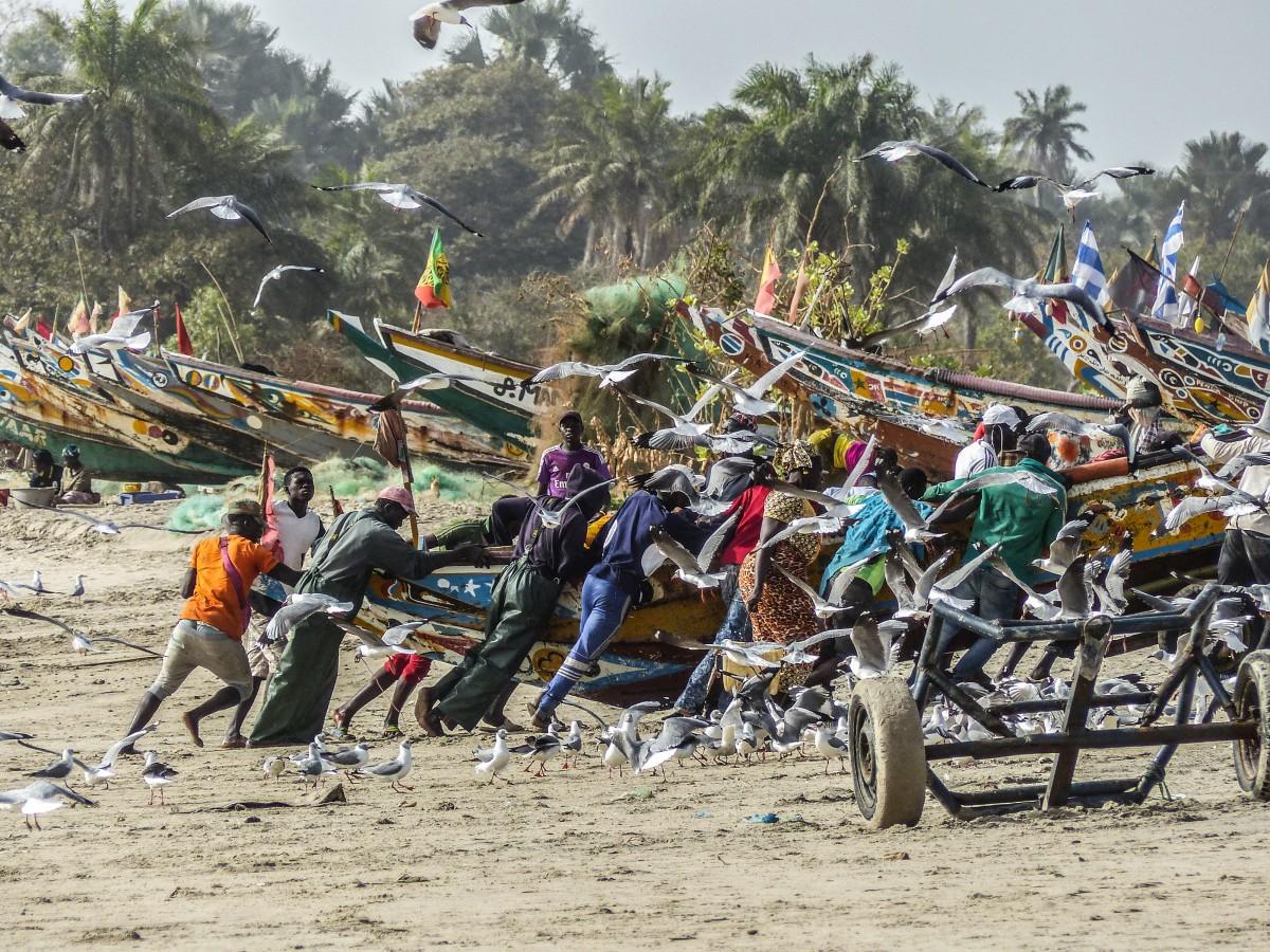 Zdjęcia: Sanyang , razem...., GAMBIA