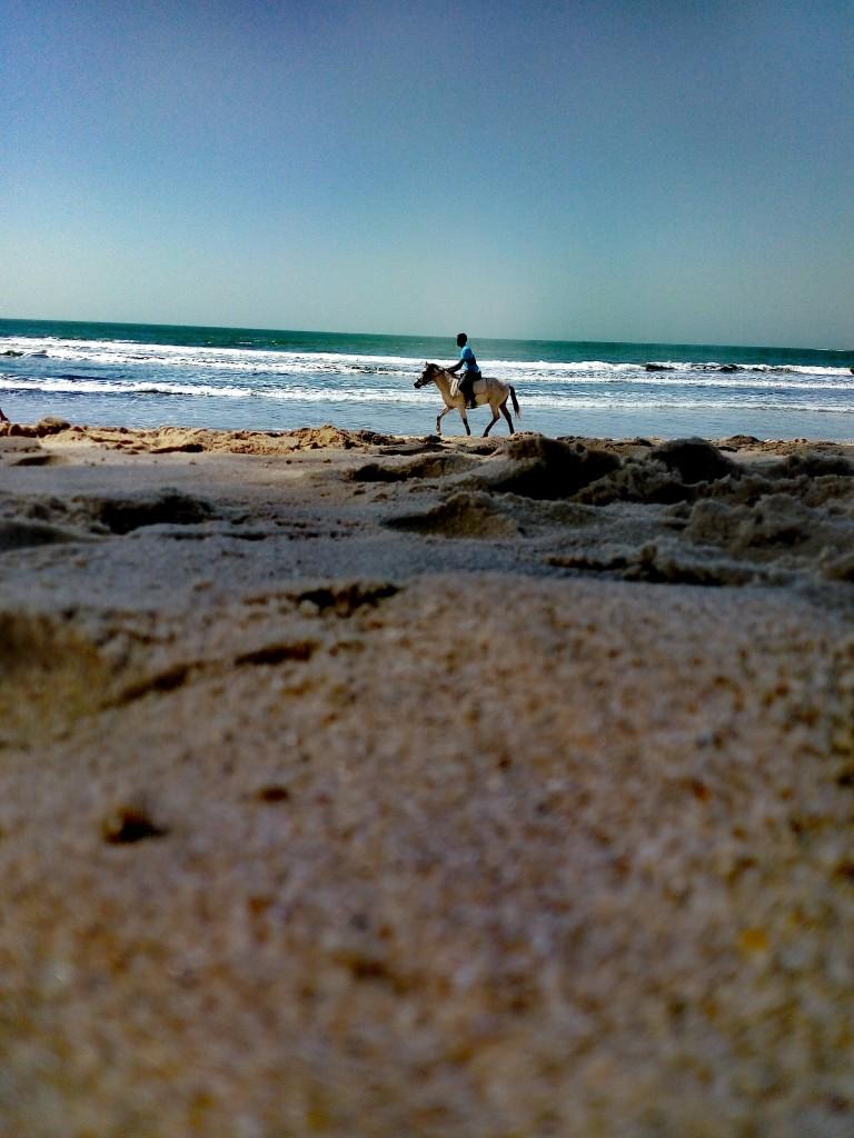 Zdjęcia: Kololi beach, Kololi, plaża w Gambii, GAMBIA