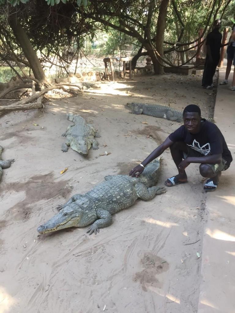 Zdjęcia: Kachikally, Western Division, Gambia , GAMBIA
