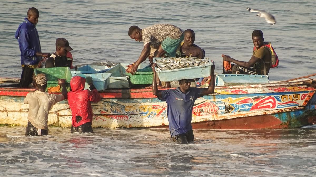Zdjęcia: Bakau, Greater Banjul Area, Odbiór dostawy..., GAMBIA