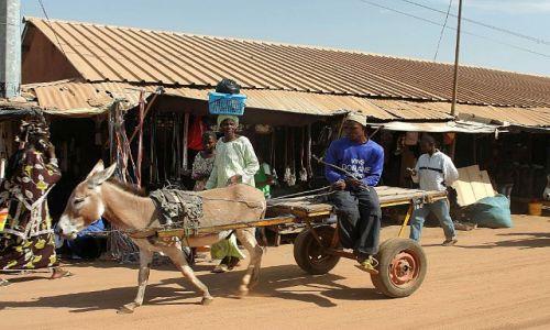 GAMBIA / - / okolica Badżul / transport lokalny