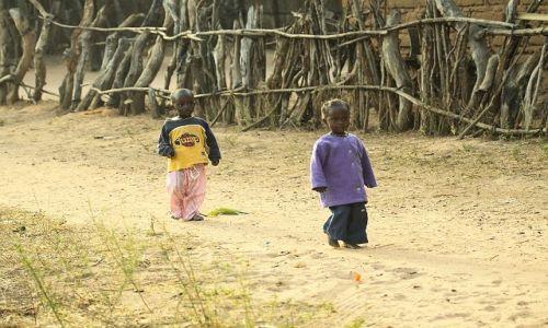 Zdjecie GAMBIA / - / Gambia / Czyż nie są urocze?