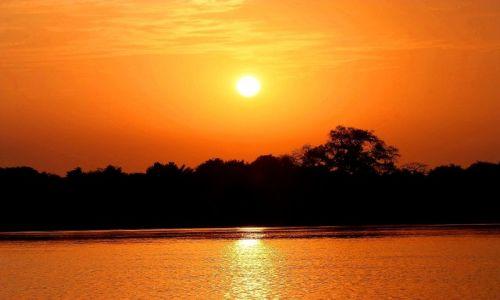 Zdjecie GAMBIA / - / rzeka Gambia / zachód słońca