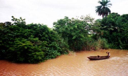 Zdjecie GAMBIA /   /   / Gambia River