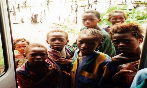 Zdjęcie GAMBIA / Gambia /   / Ciekawość