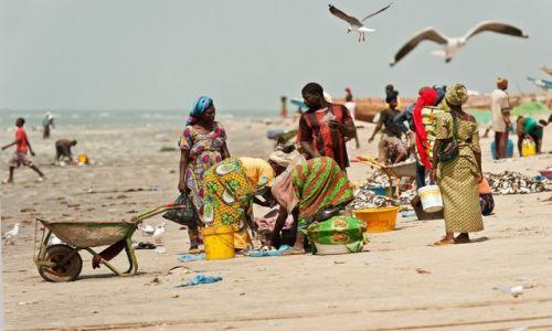 Zdjecie GAMBIA / Gambia Zachodnia / Tanji / w porcie