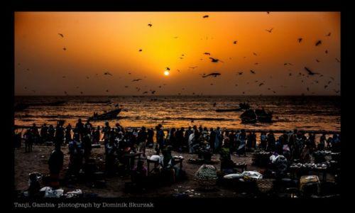 Zdjęcie GAMBIA / Banjul / Tanji / FISHERS LIFE