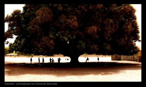 Zdjecie GAMBIA / --- / --- / Gambia- kraina