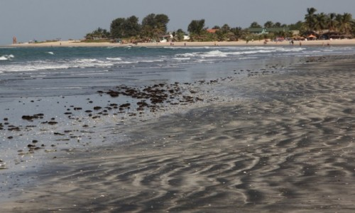 GAMBIA / Banjul / Plaża Kololi / Nad oceanem