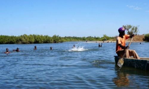 Zdjecie GAMBIA / Albreda / w drodze / W górę rzeki Gambia