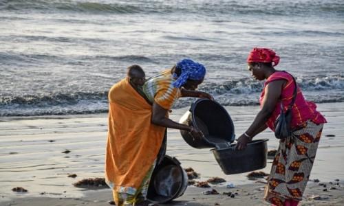 Zdjecie GAMBIA / - / Tanji / Na plaży w Tanji