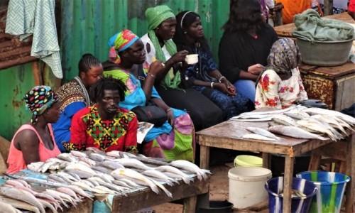 GAMBIA / Greater Banjul Area / Bakau / Zastygli ;-)