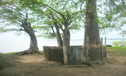 Zdjęcie GAMBIA / brak / JAMES ISLAND / pamiatka po niewolnikach na wyspie