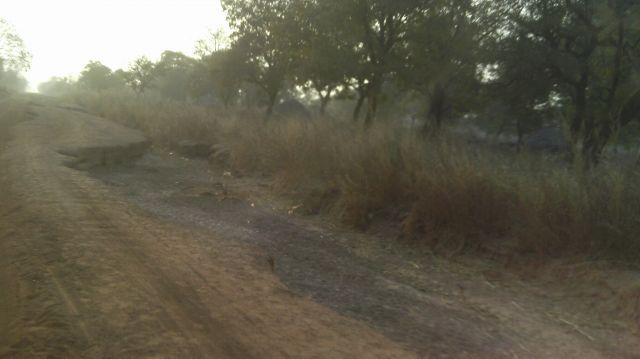 Zdjęcia: droga do Parku Mole, TAMALE, cieżka droga nas czeka...., GHANA