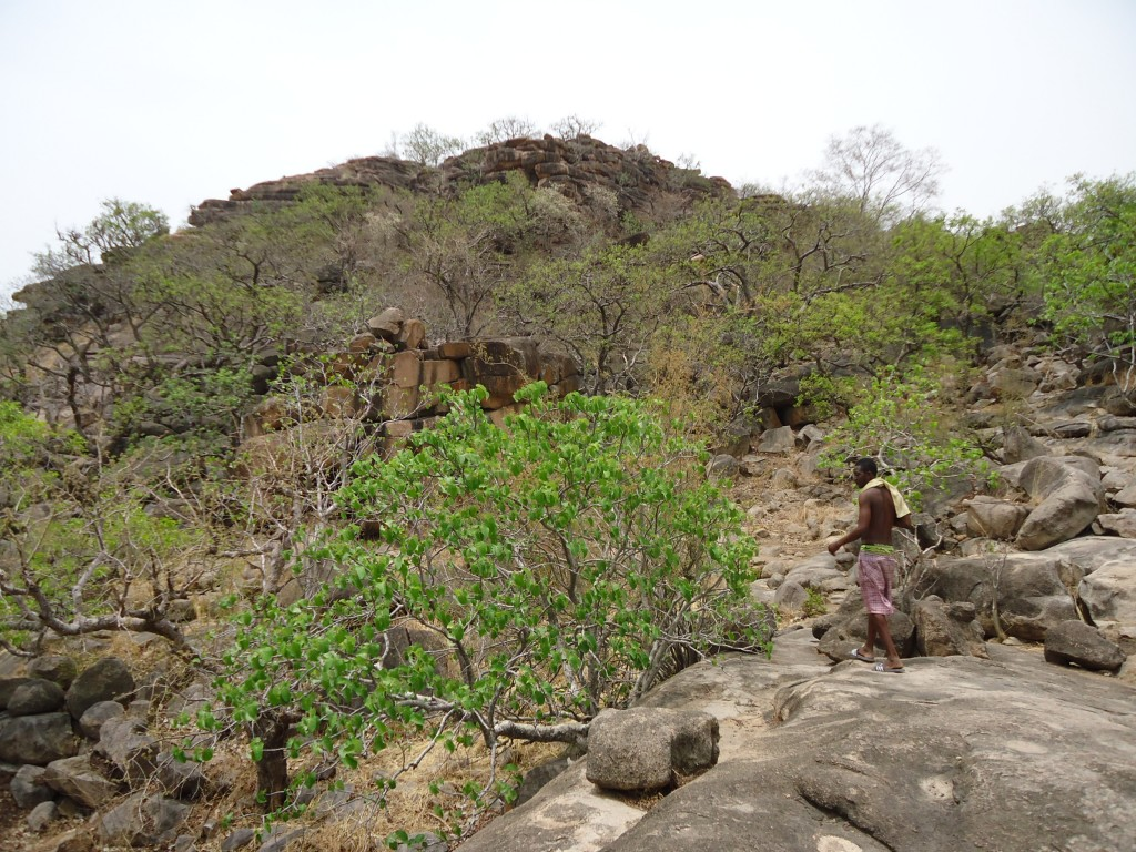 Zdjęcia: Tengzuk, Upper East, Najświętsze miejsce animistów, GHANA