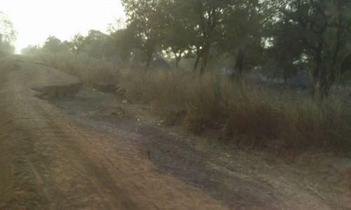 GHANA / TAMALE / droga do Parku Mole / cieżka droga nas czeka....
