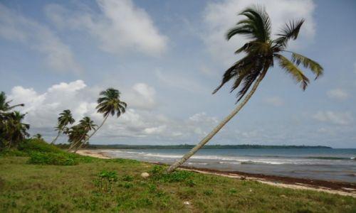 GHANA / Western Region / okolice Axim / Kawałek plaży