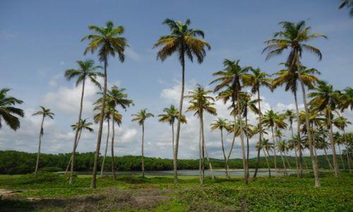 Zdjęcie GHANA / Western Region / okolice Axim / Jezioro śródlądowe