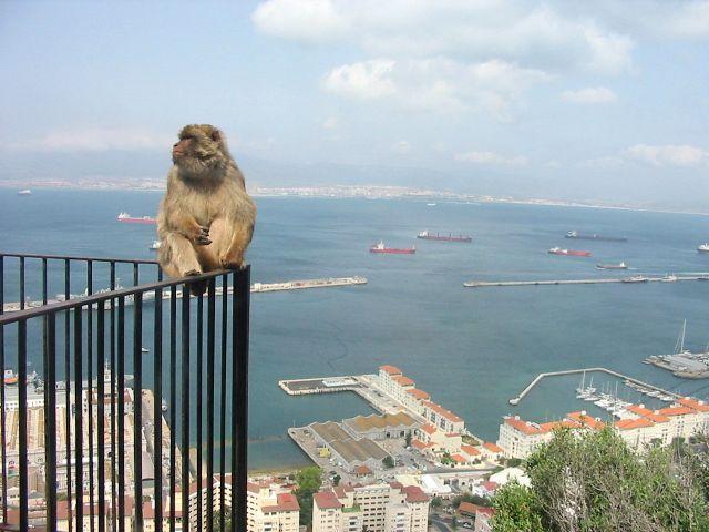 Zdjęcia: Skala The Rock, przyjemnie popatrzec z gory...., GIBRALTAR