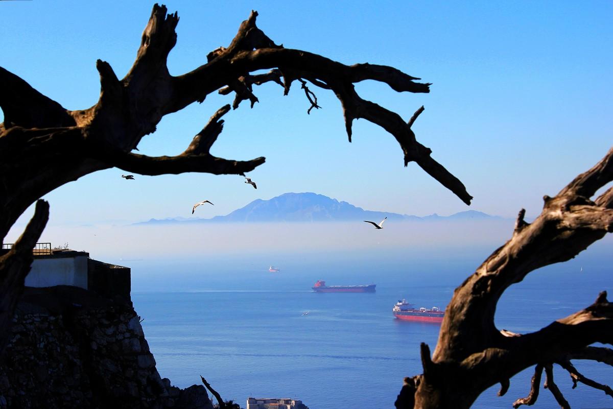Zdjęcia: Gibraltar, Gibraltar, Afryka z Gibraltaru, GIBRALTAR