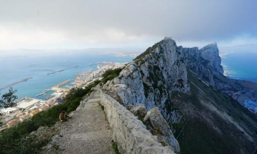Zdjecie GIBRALTAR / Skała Gibraltarska  / . / Ta, która chwilę później wskoczyła mi na plecak