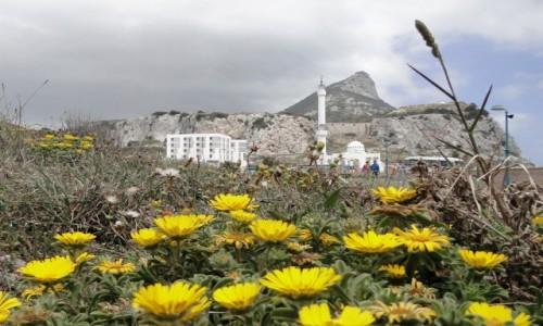 Zdjecie GIBRALTAR /   / Gibraltar / Wiosna na Gibraltarze.