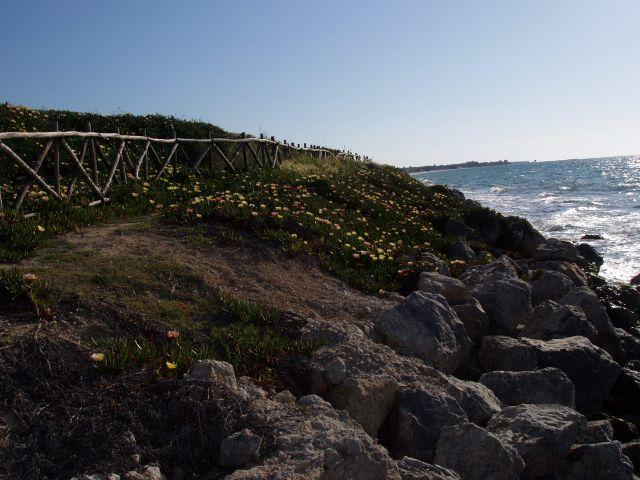 Zdjęcia: Kos i okolice, Wyspa Kos, plot 2, GRECJA