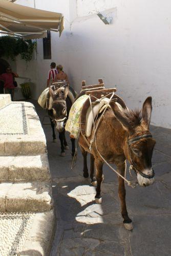 Zdjęcia: Lindos, taksówki, GRECJA