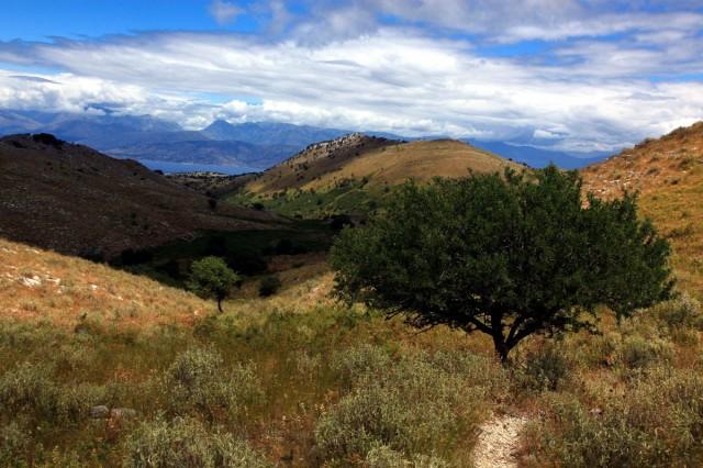 Zdjęcia: Perithia, Korfu, Na szlaku, GRECJA