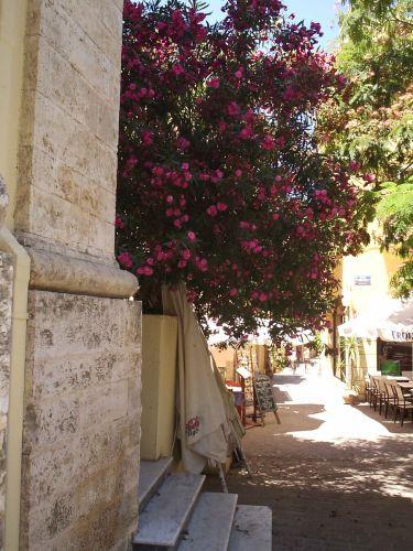 Zdjęcia: Chania, kreta, Kreta, GRECJA