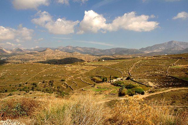 Zdjęcia: Naxos, Cyklady, pola w głębi wyspy, GRECJA