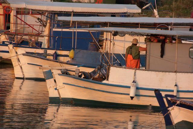 Zdjęcia: Sithonia, Półwysep Chalkidiki, Wyprawa po ryby , GRECJA