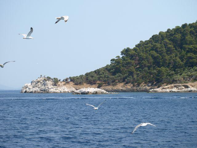 Zdjęcia: Kelifos, chalkidiki, OGON ŻÓŁWIA - koniec wyspy, GRECJA