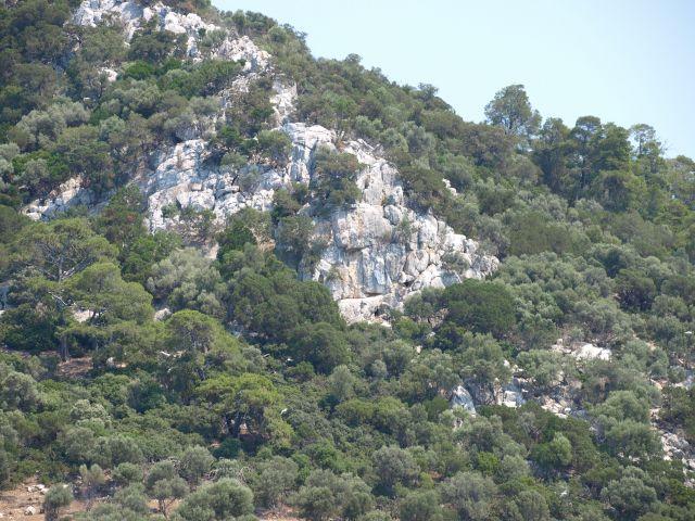Zdjęcia: kelifos, Chalkidiki, zbocze wyspy, GRECJA