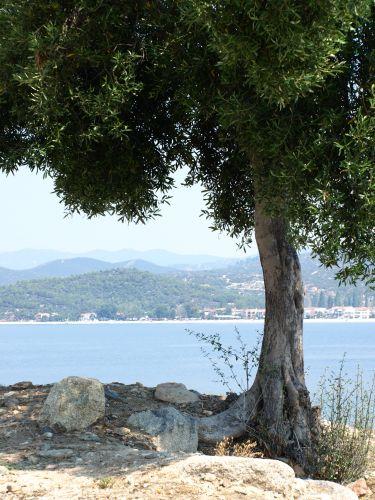 Zdjęcia: sithonia, Chalkidiki, z lądu, GRECJA