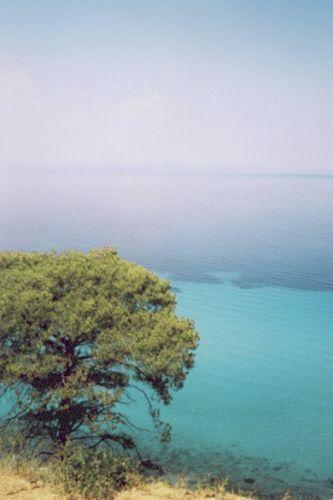 Zdj�cia: Fokea, Chalkidiki, Morze, GRECJA