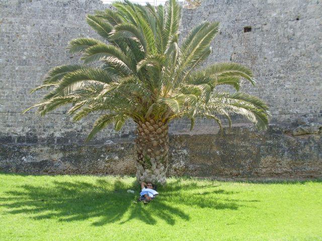 Zdjęcia: mury obronne zamku Joanitów, Rodos, Odpoczynek na Rodos, GRECJA