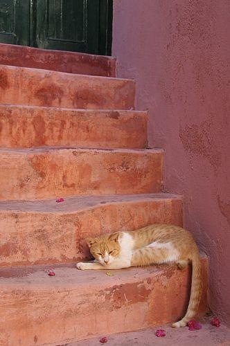 Zdjęcia: Kreta, V, GRECJA
