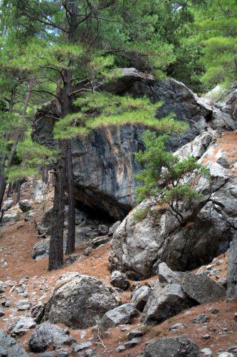 Zdjęcia: Kreta, Samaria, Kreta, Wąwóz Samaria 2, GRECJA