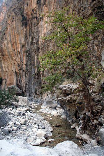 Zdjęcia: Kreta, Samaria, Kreta, Wąwóz Samaria 5, GRECJA