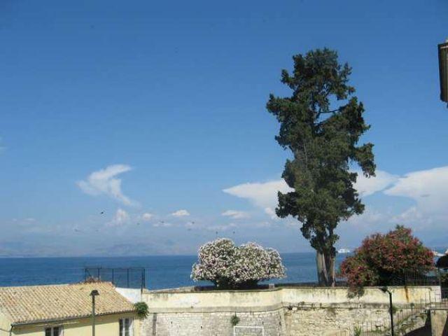 Zdjęcia: Gdzieś po drodze, Korfu, Dumne trio, GRECJA