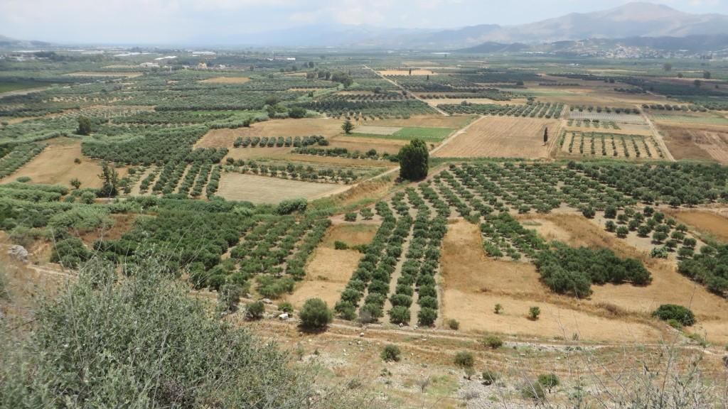 Zdjęcia: Fajstos, Kreta, kreteńskie pejzaże, GRECJA