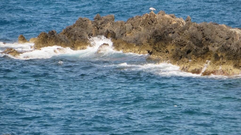 Zdjęcia: Rethimnon, Kreta, północne wybrzeże Krety, GRECJA