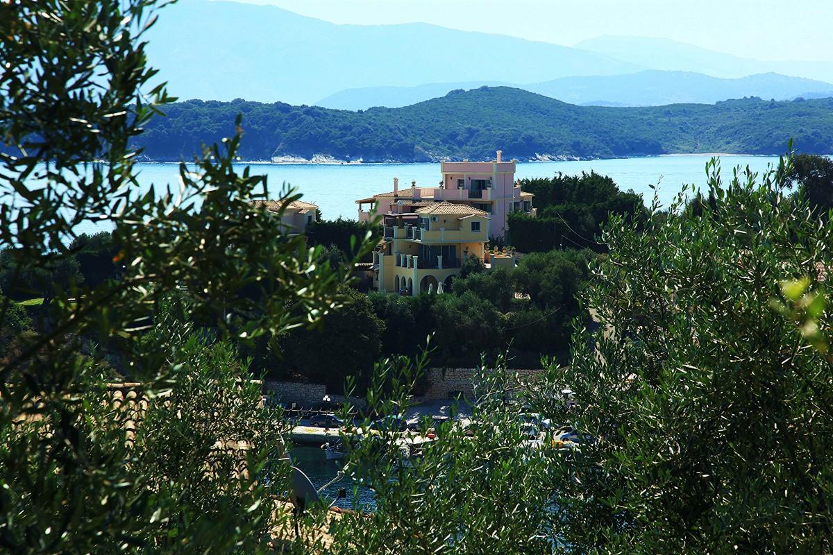 Zdjęcia: Kassiopi, Korfu, Z oliwnego sadu, GRECJA