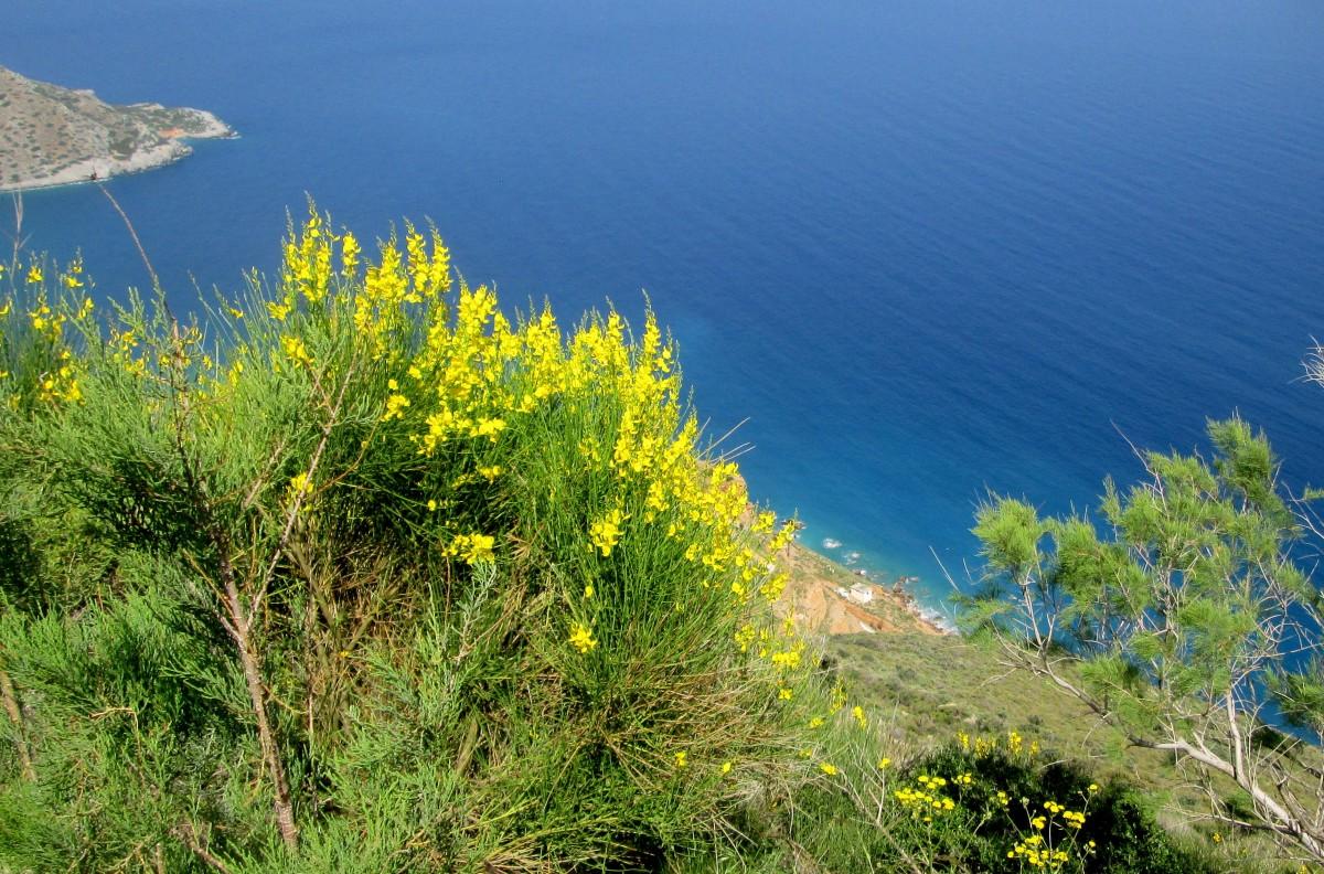 Zdjęcia: okolice Sitii, Kreta Wschodnia, Z wysokiego klifu, GRECJA