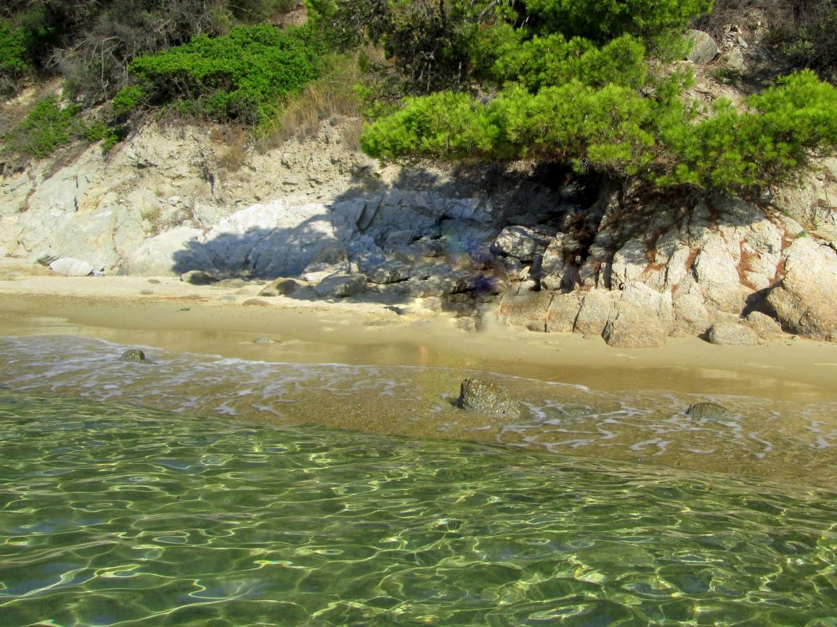 Zdjęcia: Skiathos , Sporady Północne, Nad wodą czystą przejrzystą, GRECJA
