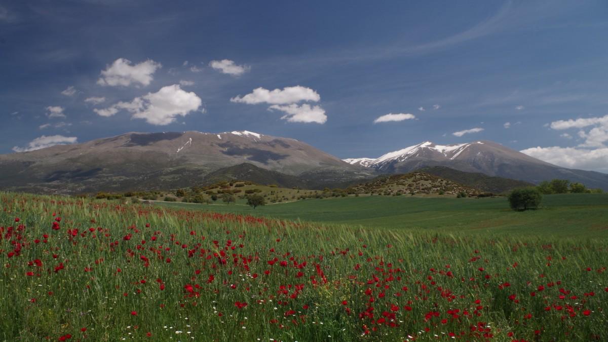 Zdjęcia: Gdzieś w okolicach masywu Olimpu, Grecja, Ulepszona tapeta z Windows XP ;), GRECJA